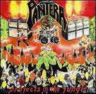 Pantera:Projects in the jungle