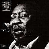 Muddy Waters:Muddy