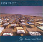 Pink Floyd:A Momentary Lapse Of Reason