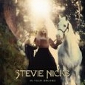 Stevie Nicks:In Your Dreams