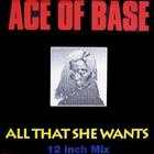 Ace of Base:All That She Wants