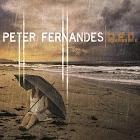 Peter Fernandes: Q.E.D.