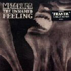 Metallica: The Unnamed Feeling