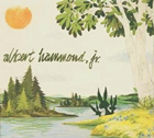Albert Hammond, Jr.: Yours to Keep