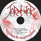 Tormentor:Lesson in Aggression