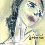Damien Rice:9 Crimes