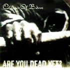 Children Of Bodom:Are You Dead Yet?