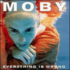 Moby:Everything is wrong