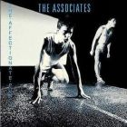 associates:The affectionate punch