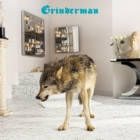 Grinderman: Grinderman 2