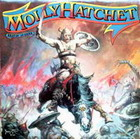 molly hatchet:Beatin' the odds