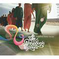 Polyphonic Spree: Together we're heavy