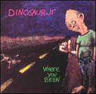 Dinosaur Jr:Where You Been