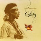 Jimi Hendrix:Crash Landing