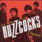 Buzzcocks:Ever fallen in love? Buzzcocks finest