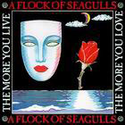 A Flock Of Seagulls:The Story of a Young Heart