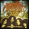 ELECTRIC BOYS: Now Dig This!