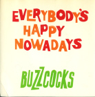 Buzzcocks:Everybody's Happy Nowadays