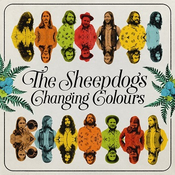 Sheepdogs: Changing Colours